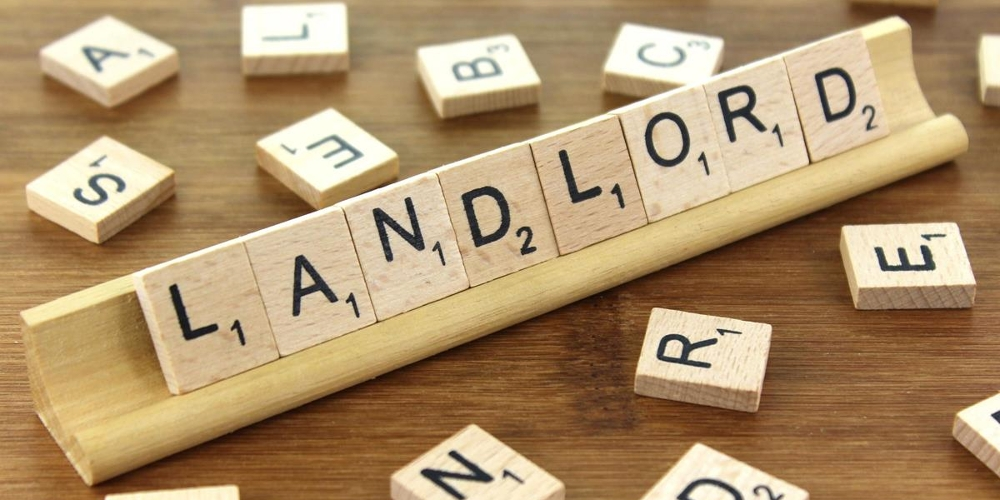 the rise of the reluctant irish landlord haden properties